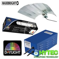 DAYLIGHT 600W CMH EURO WING LIGHTING KIT