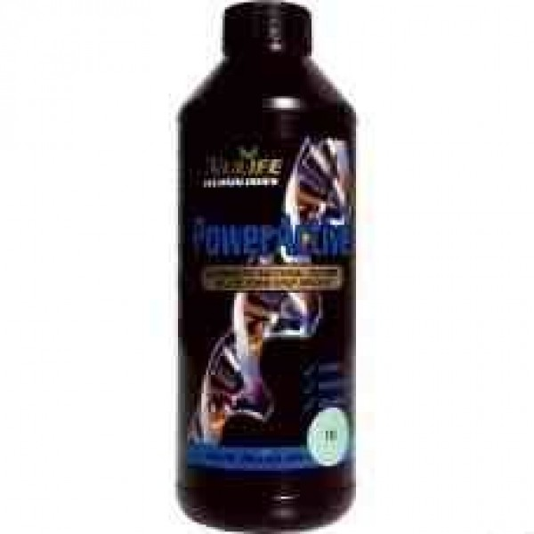 Power Active 1LTR