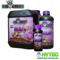 BIOGREEN MAM - MOTHERPLANTS
