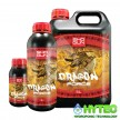 SHOGUN DRAGON FORCE FLOWERING BOOSTER