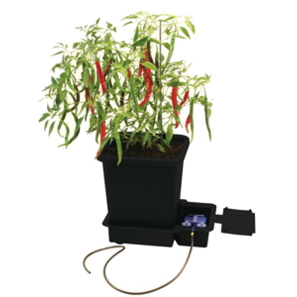 1POT MODULE AQUAVALVE5 - 9MM