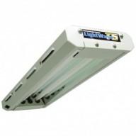 T5 2ft x 2 Lamp unit lightwave